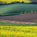 Irene Becker Photography: Fantastic Landscape and Portrait Images