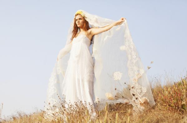 BriAnne Wills Photography